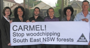 Greens MP Lee Rhiannon and Greens members in Carmel Tebbutt's seat of Marrickville